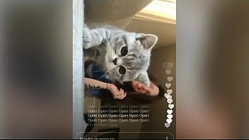 dr jarabacoa video 100 real sister and brathor incest video